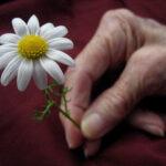 キーワードは「ストレス」──老けやすい肌にならない方法